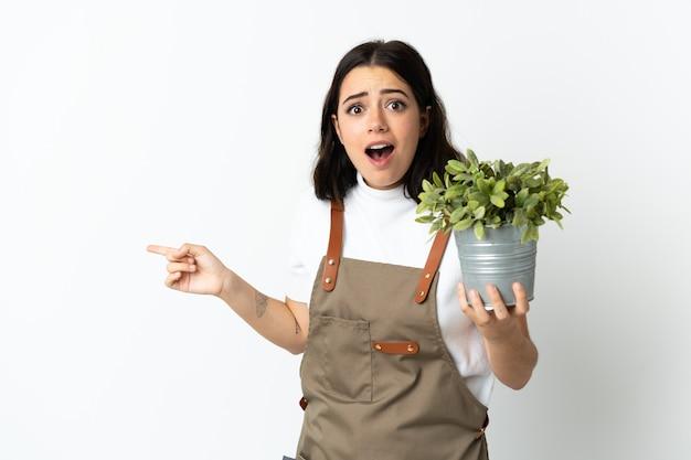 La giovane donna caucasica che tiene una pianta isolata su fondo bianco ha sorpreso e che indica il dito al lato