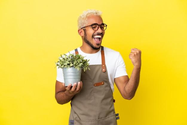 Giovane uomo colombiano che tiene una pianta isolata su sfondo giallo che celebra una vittoria