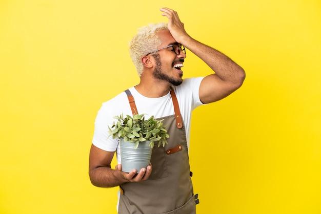 Il giovane colombiano che tiene in mano una pianta isolata su sfondo giallo ha realizzato qualcosa e intendeva la soluzione