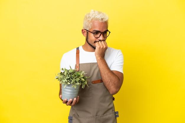Giovane uomo colombiano in possesso di una pianta isolata su sfondo giallo con dubbi