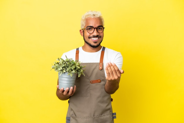 Giovane uomo colombiano in possesso di una pianta isolata su sfondo giallo che invita a venire con la mano. felice che tu sia venuto