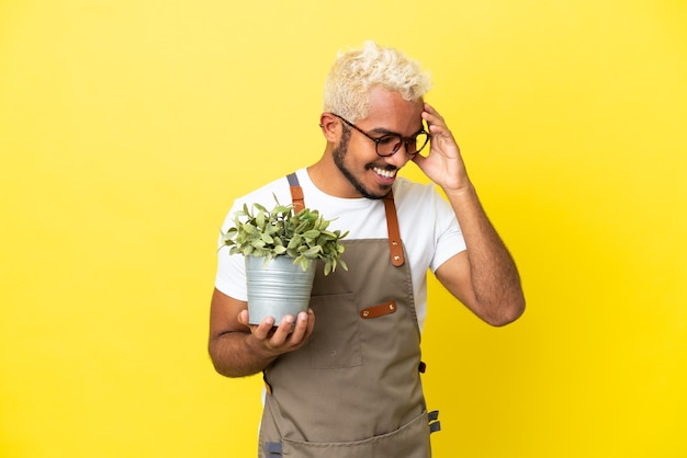 Giovane uomo colombiano che tiene una pianta isolata su sfondo giallo ridendo