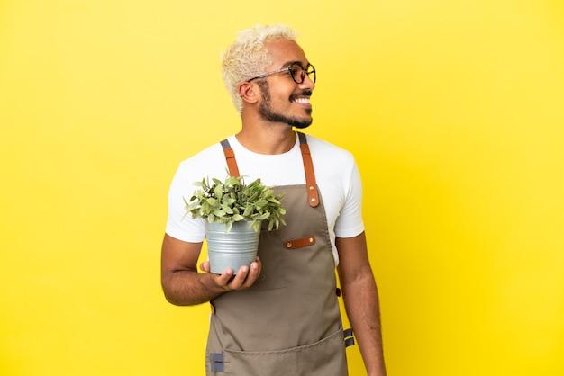 Giovane uomo colombiano che tiene una pianta isolata su sfondo giallo guardando di lato