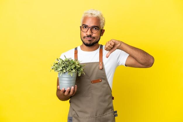 Giovane uomo colombiano che tiene una pianta isolata su sfondo giallo che mostra il pollice verso il basso con espressione negativa