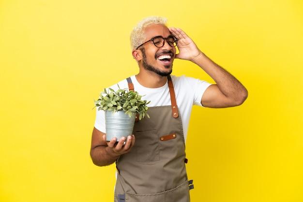 Giovane uomo colombiano che tiene una pianta isolata su sfondo giallo che sorride molto