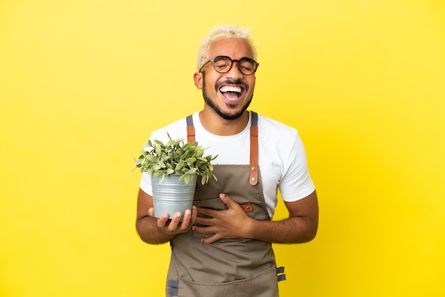 Giovane uomo colombiano che tiene una pianta isolata su sfondo giallo sorride molto