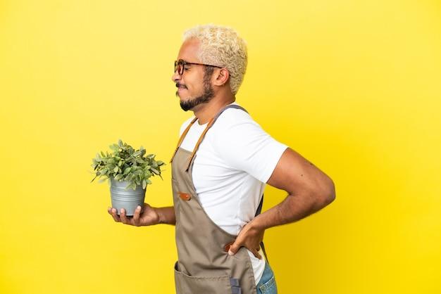 Giovane uomo colombiano in possesso di una pianta isolata su sfondo giallo che soffre di mal di schiena per aver fatto uno sforzo