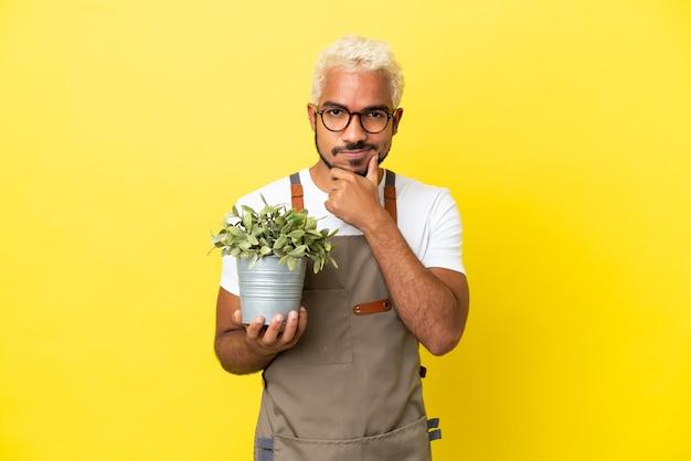 Giovane uomo colombiano in possesso di una pianta isolata su sfondo giallo pensando