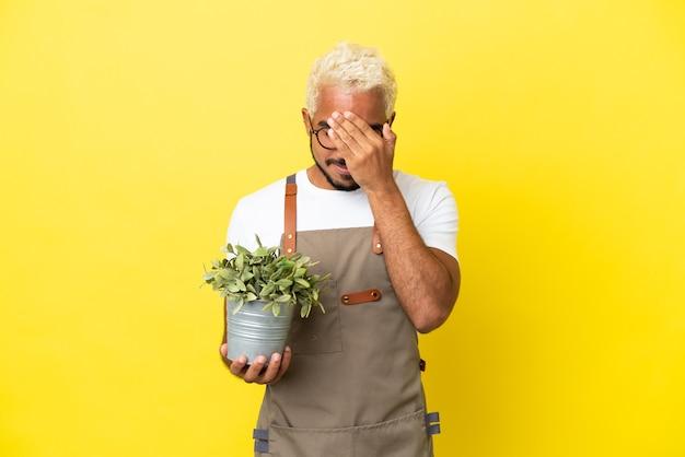 Giovane uomo colombiano che tiene una pianta isolata su sfondo giallo con espressione stanca e malata