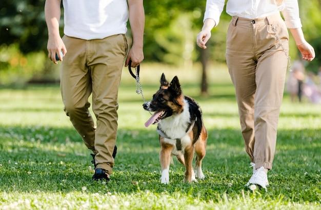 Coppia giovane a piedi con il loro cane border collie in un parco