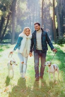 Giovane coppia donna e uomo in vestiti di jeans che camminano con due cani whippet all'aperto in autunno