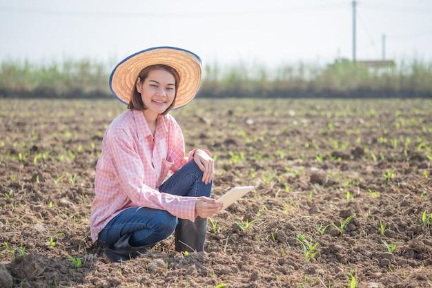 Donna asiatica del giovane agricoltore che si siede e che tiene compressa astuta in un campo di grano. immagine di concetto di tecnologia fattoria.