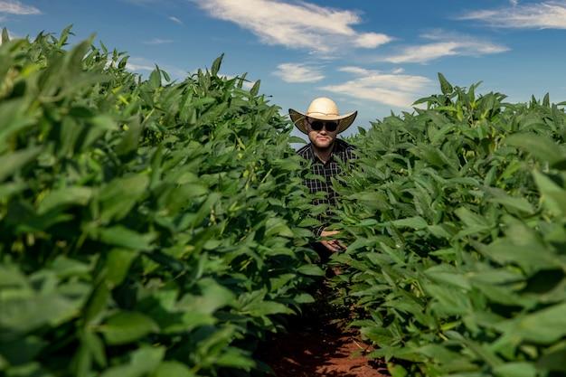 Giovane agricoltore che indossa un cappello nel campo di soia.