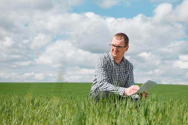 Giovane agricoltore su un campo di grano. frumento giovane in primavera. concetto di agricoltura. un agronomo esamina il processo di maturazione del grano nel campo