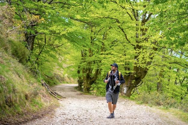 Un giovane padre con il neonato nello zaino su un sentiero nella foresta verso il picnic con la famiglia