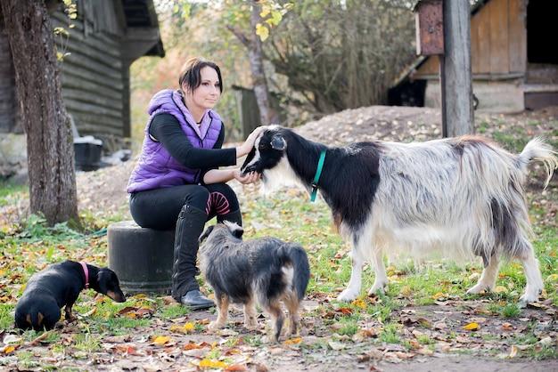 Una giovane contadina nutre le capre con il pane nel cortile della sua fattoria