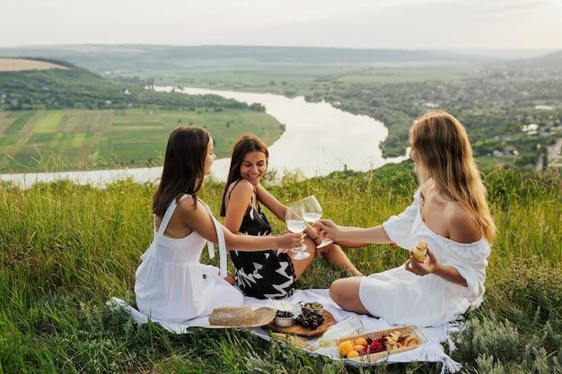 Giovani amici che hanno un picnic, bevendo e parlando.