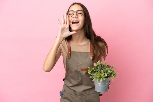 Giovane ragazza del giardiniere che tiene una pianta isolata su fondo rosa che grida con la bocca spalancata