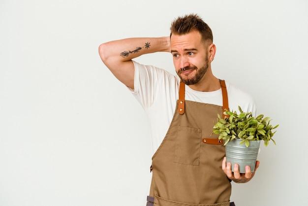 Giovane giardiniere tatuato uomo caucasico che tiene una pianta isolata su priorità bassa bianca che tocca la parte posteriore della testa, pensando e facendo una scelta.