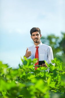 Il giovane agronomo bello tiene il computer del rilievo di tocco della compressa nel campo di cotone ed esamina i raccolti