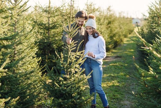 Giovane famiglia felice che sceglie l'albero di natale alla piantagione che prepara le feste. concetto di vacanze invernali.