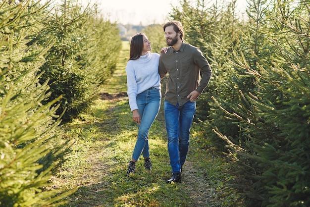 Giovane famiglia alla moda felice che sceglie l'albero di abete alla piantagione che prepara le feste.