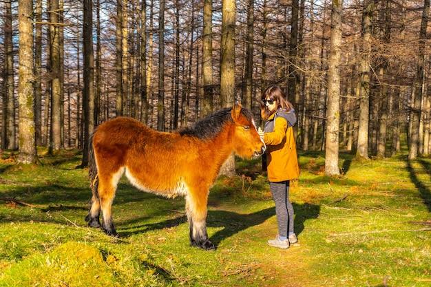 Un giovane escursionista che accarezza cavalli selvaggi nella faggeta di oianleku, nella città di oiartzun, gipuzkoa. paesi baschi