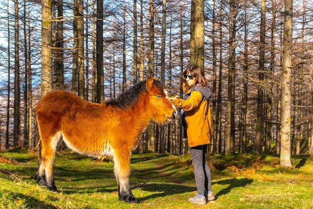 Un giovane escursionista che accarezza cavalli selvaggi nella foresta di oianleku, nella città di oiartzun, gipuzkoa. paesi baschi. spagna