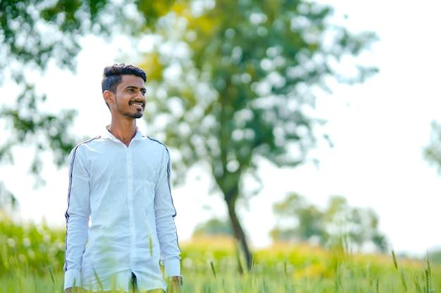 Giovane uomo indiano in piedi al campo di grano verde