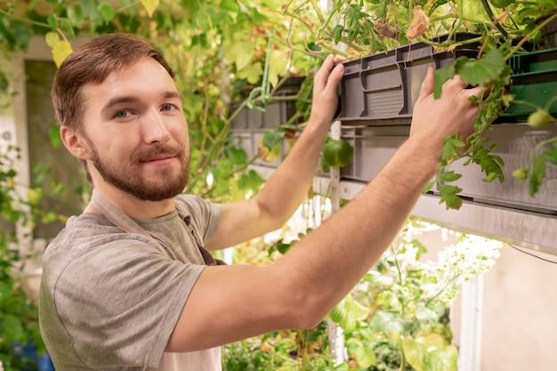 Giovane giardiniere maschio in abbigliamento da lavoro che ti guarda mentre prende la scatola con piante verdi per prendersi cura di loro
