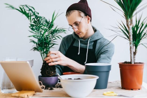 Giardiniere del giovane in occhiali trapiantare la pianta in vasi sul tavolo in legno bianco e utilizzando il computer tablet