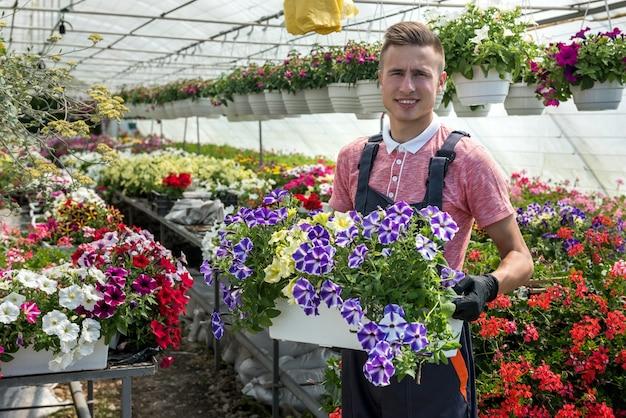 Giovane che tiene una scatola piena di fiori primaverili che lavora in una serra industriale. botanica