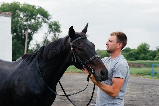 Un giovane si alza e guarda uno stallone purosangue nel ranch. zootecnia e allevamento di cavalli purosangue.
