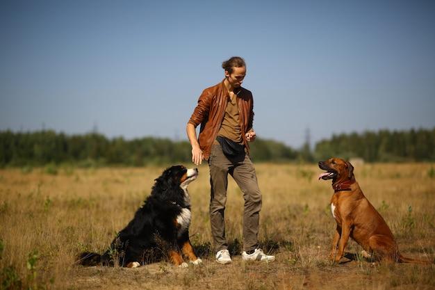Giovane che cammina con due cani bernese mountain dog e ridgeback sul campo estivo