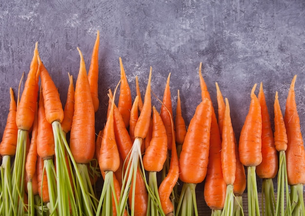 Giovane mini carota