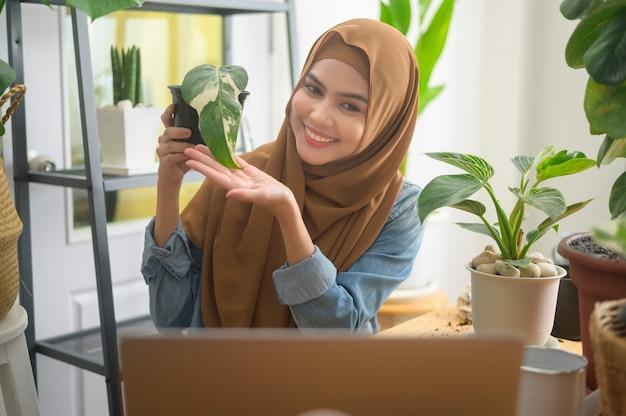 Una giovane imprenditrice musulmana che lavora con il laptop presenta piante d'appartamento durante lo streaming live online a casa