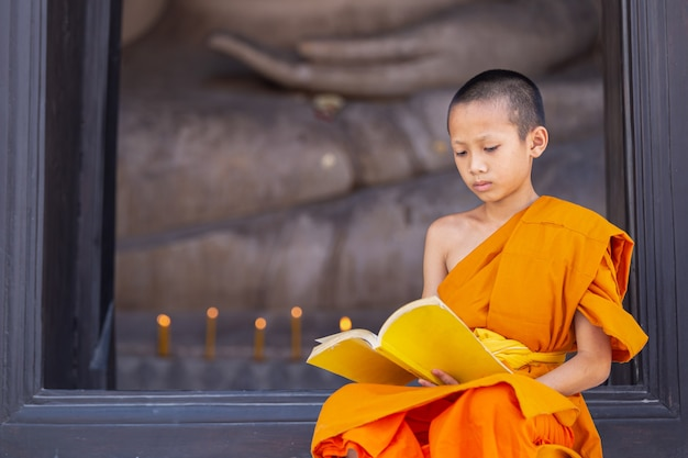Monaco giovane novizio leggendo un libro in wat phutthai sawan temple, ayutthaya, thailandia