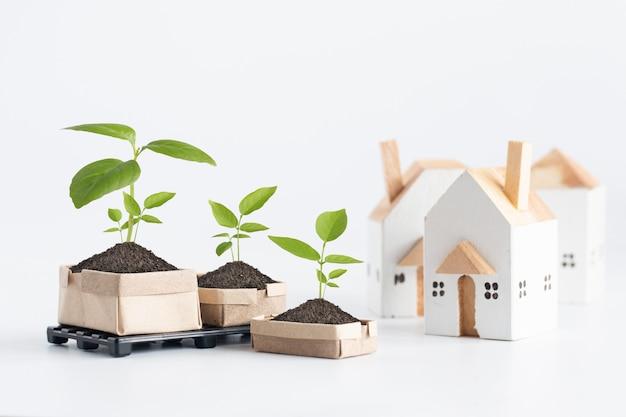 Piante giovani sul legno del pallet fatto da plastica con la casa miniatura, concetto dell'ambiente