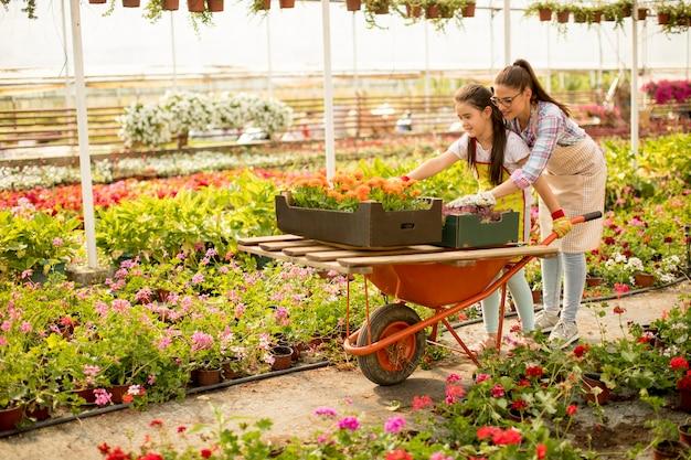 Giovane fiorista giocherellone che si diverte a lavorare e cavalca il carrello nella serra