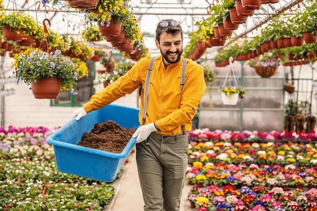 Giovane sorridente barbuto vivaio operaio giardino tenendo vasca con terreno e sta progettando di piantare nuovi fiori.
