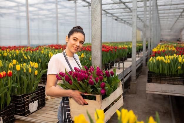 Giovane ragazza sorridente con scatola di tulipani, lavoratore con fiori in serra. concetto di lavoro in serra, fiori.