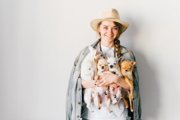 Giovane ragazza alla moda che tiene quattro cuccioli della chihuahua in mani
