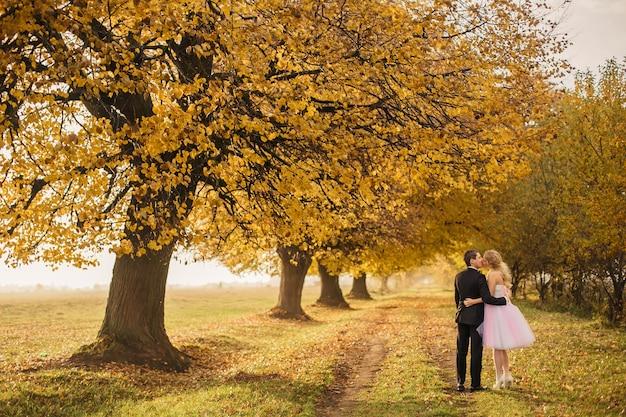 Giovani sposi alla moda che abbracciano e baciano sopra gli alberi gialli nelle foglie