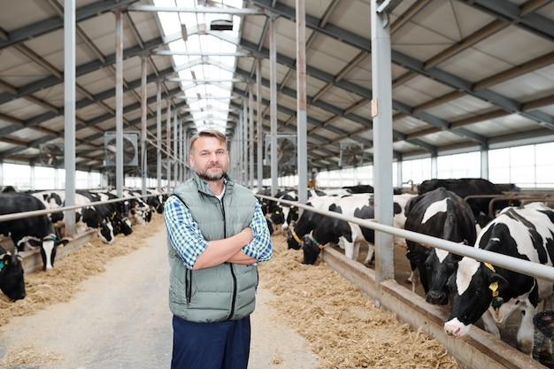 Giovane agricoltore di successo in piedi nel mezzo del lungo corridoio all'interno dell'azienda agricola di mucche da latte tra il bestiame