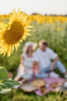 Picnic di giovani coppie adolescenti sul campo di girasoli nel tramonto. mangiare pizza e bere champagne, sfondo sfocato