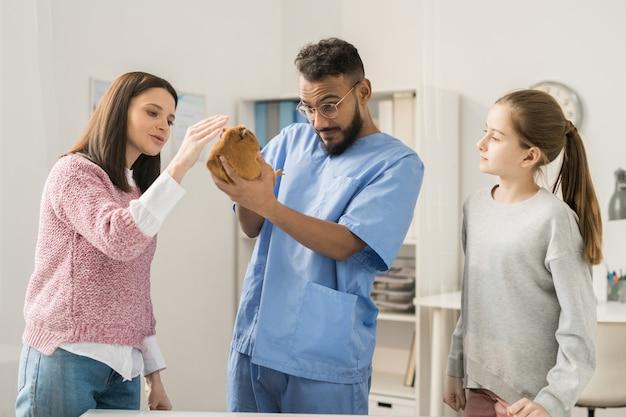 Giovane veterinario che esamina cavia marrone in sue mani mentre la esamina e donna graziosa che stringe a sé l'animale domestico