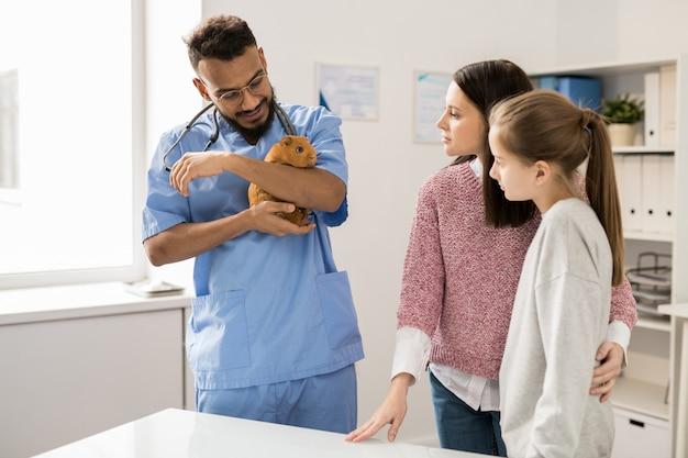 Giovane veterinario clinico in uniforme con adulto cavia marrone durante la consultazione dei suoi proprietari