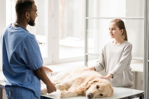 Giovane medico veterinario in uniforme che mette fasciatura sulla zampa di cane malata e che consulta bambina nell'ospedale