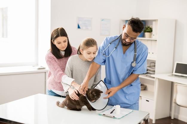 Giovane medico veterinario in uniforme che mette imbuto sul collo del gatto prima di effettuare procedure mediche o esaminare l'animale Foto Premium