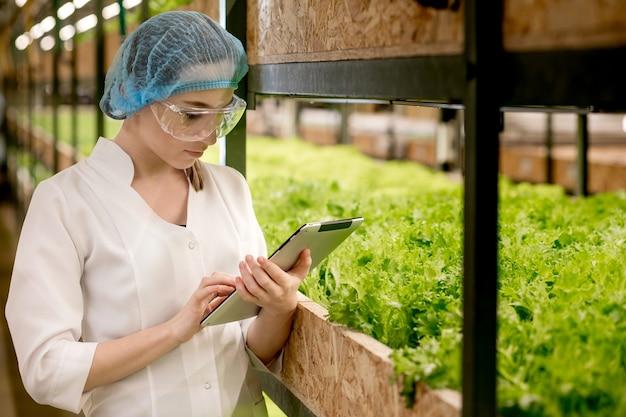 Giovane donna biotecnologo utilizzando tablet per controllare la qualità e la quantità di verdura nella fattoria idroponica
